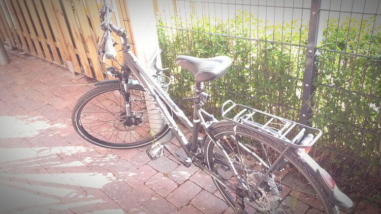 My Bike Love It Looking For Adventures 😍
