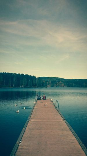 Autumn Lake Forest Sognsvann Oslo Norway Sunday Relaxing Chilling Friends Nordmarka