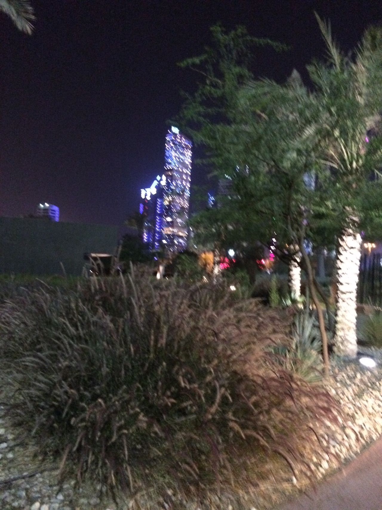 Kuwait City Shohada Garden