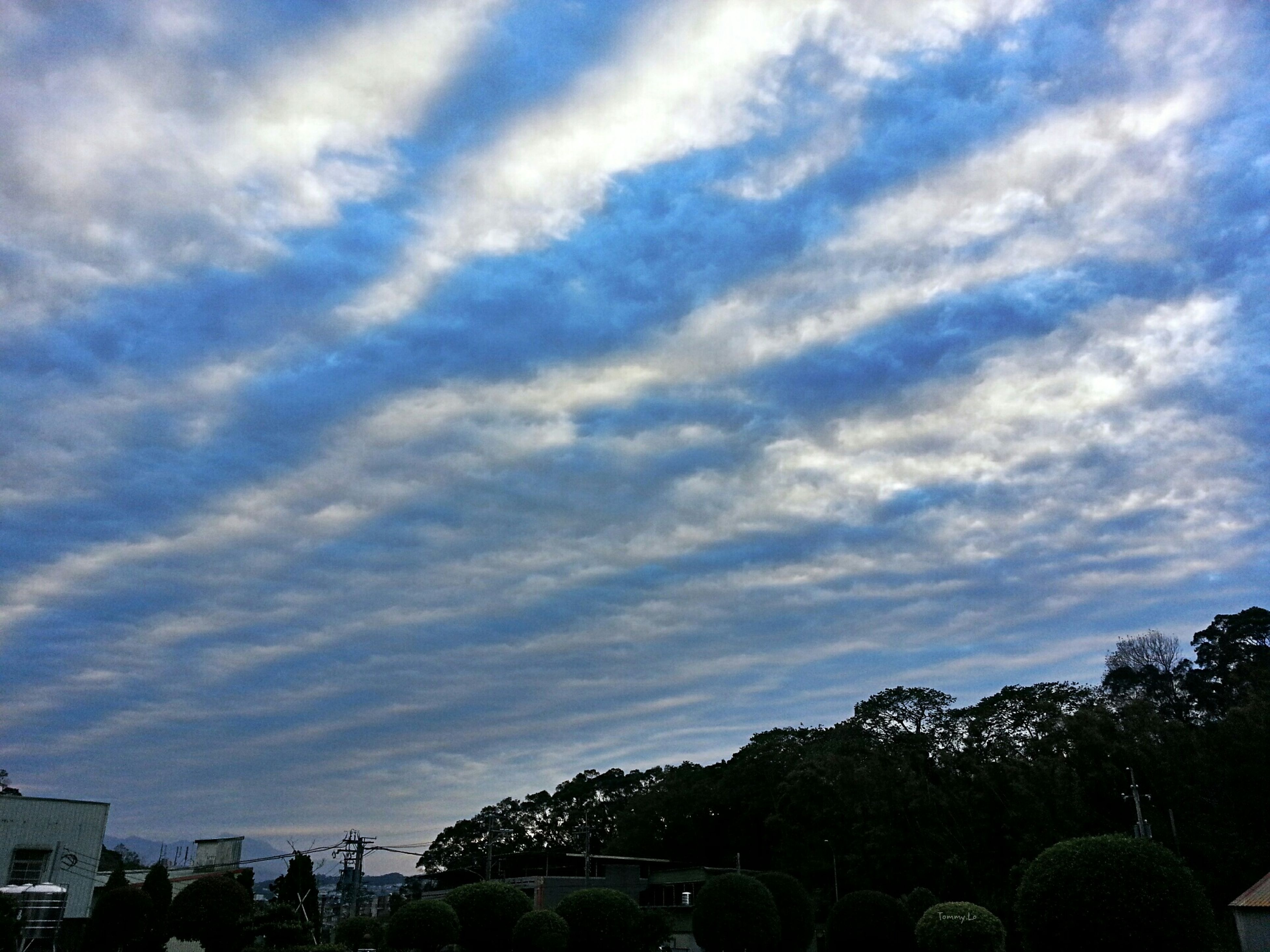 sky, cloud - sky, tree, cloudy, cloud, low angle view, nature, beauty in nature, outdoors, built structure, day, growth, tranquility, scenics, silhouette, blue, tranquil scene, architecture, no people, weather