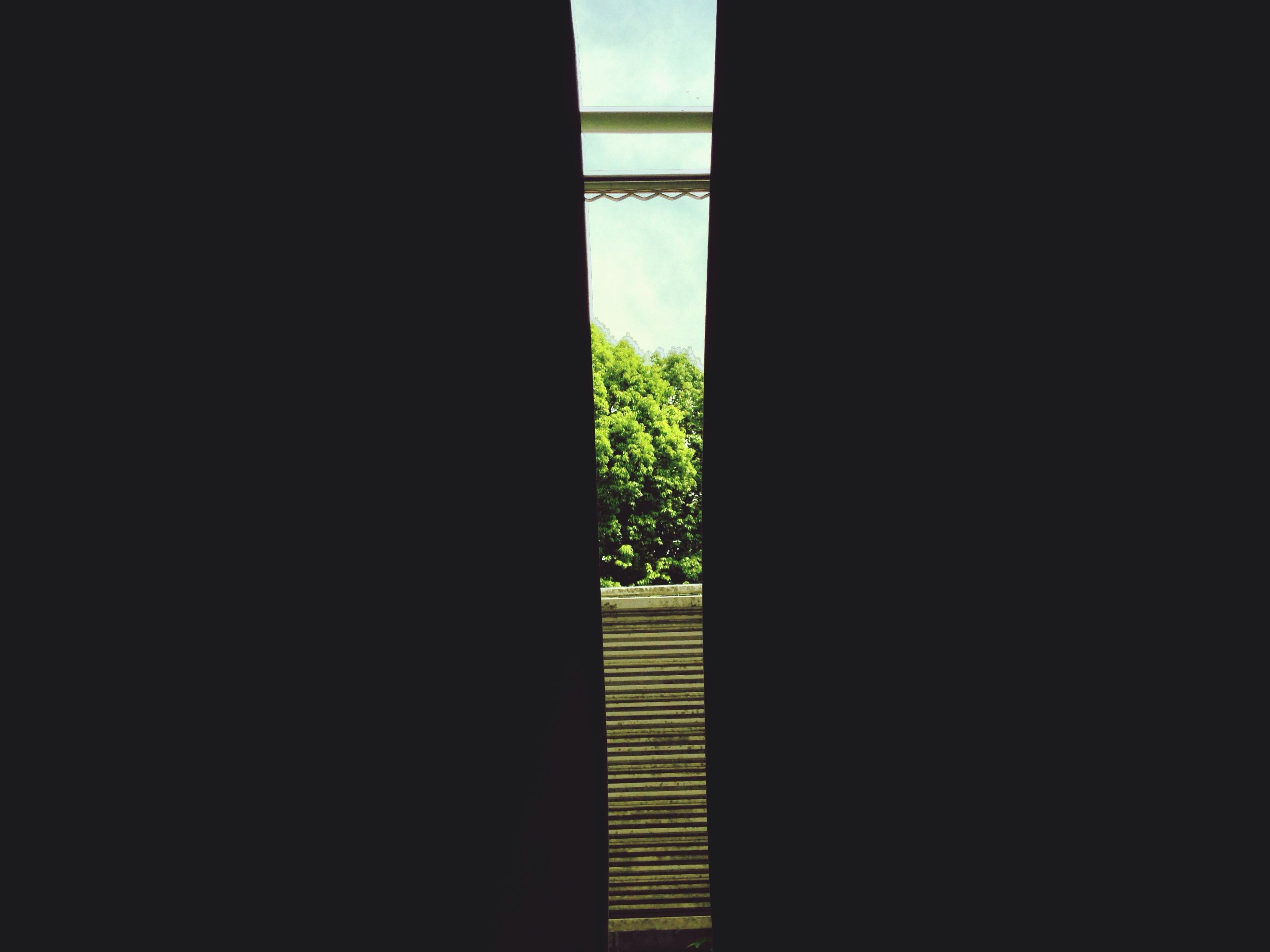 indoors, window, copy space, dark, home interior, built structure, house, architecture, wall - building feature, sunlight, wall, closed, plant, tree, curtain, day, door, silhouette, no people, shadow