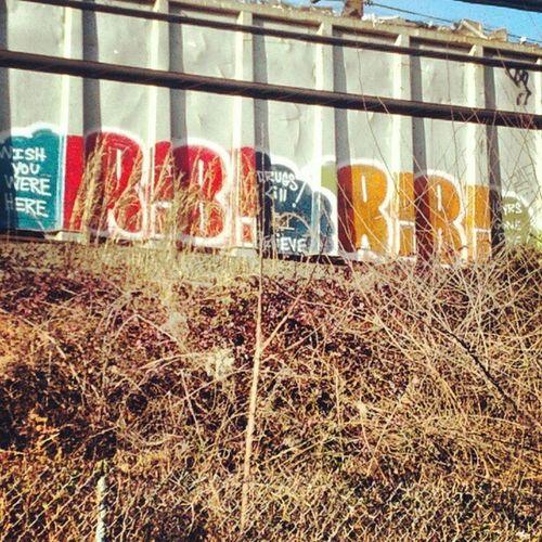 Railroad Graffiti Streetart Freightcar drugskill LIRR train