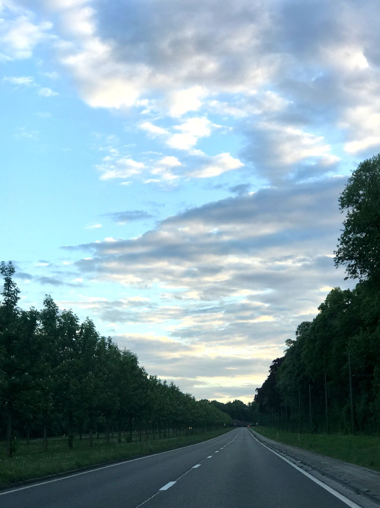 Road Cloud - Sky Sky The Way Forward Tree Transportation Nature No People Tranquility Scenics Tranquil Scene Day Outdoors Landscape Beauty In Nature