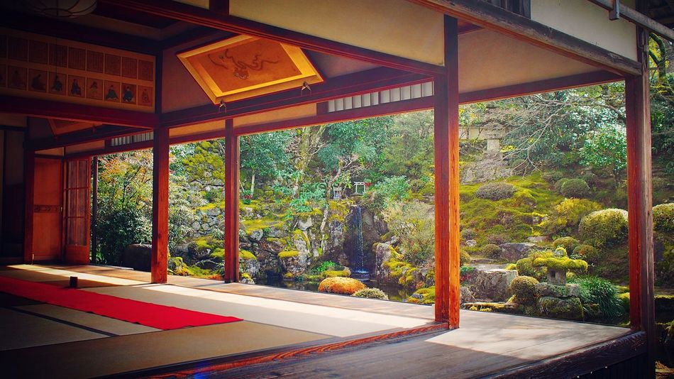 実光院 大原 京都 Kyoto Kyoto, Japan Hello World Enjoying Life Kyoto Garden Japanese Garden 3XSPUnity Travel Destinations Relaxing