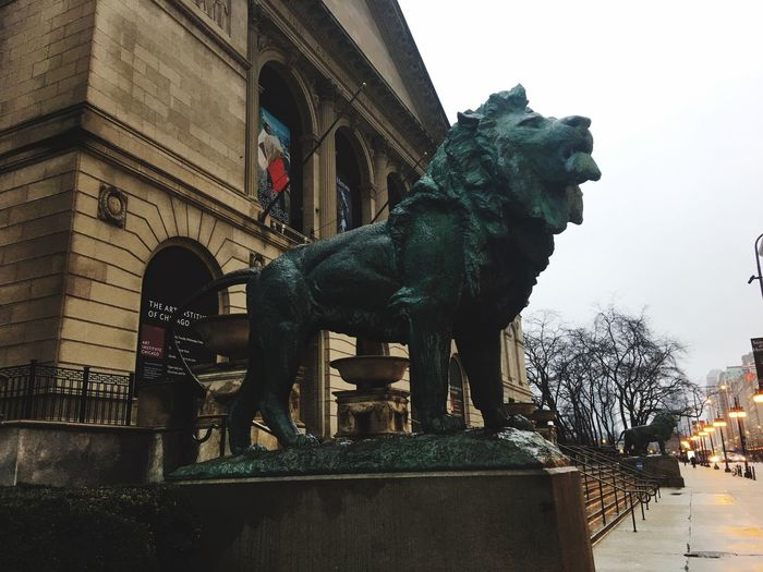 Lion Statue Downtown Downtown Chicago Chicago Museum Michigan Avenue Lakeshore Art Institute Of Chicago