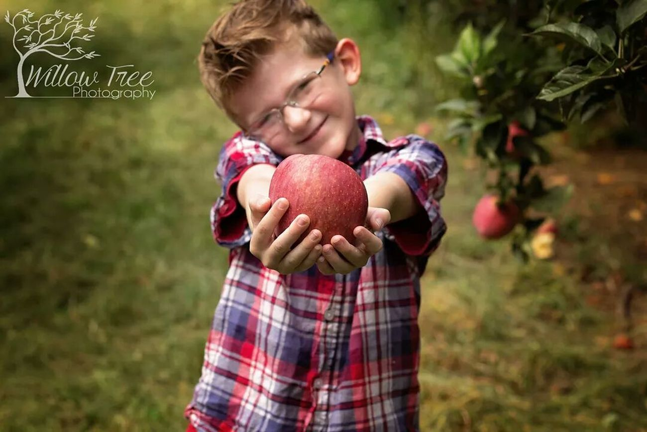 Apple picking, day! Tadaa Community Love My Family ❤ Red Apples Eyem Best Shots Nature_collection