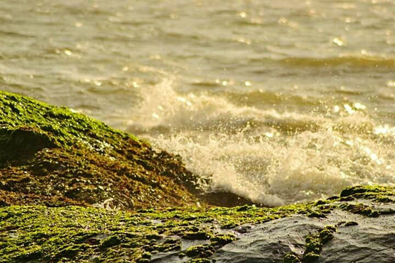 motion, wave, water, nature, no people, beauty in nature, splashing, sea, outdoors, sunlight, day, scenics, power in nature, freshness
