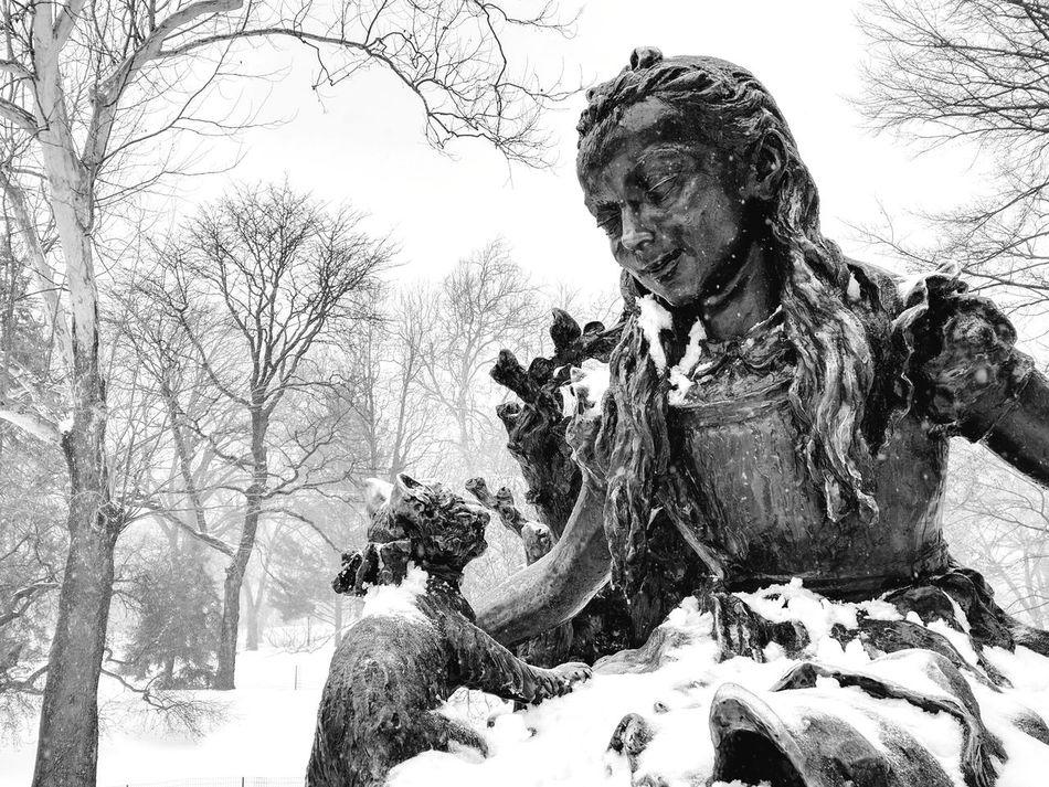 Alice in Winter Wonderland Aliceinwonderland Alice Statue Central Park Central Park - NYC Central Park, New York Snowcapped Snow Snowing New York City