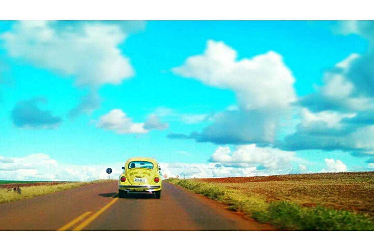 Volks Volkswagen Vintage Cars Nature Natureza 🐦🌳 Natureza Nature ♡ Clasic Cars Fusca Fusca72 Phorography  Phorographer Portrait Beautiful Nice Love Word Freedom Sunset Nuvens CeuAzul Colors Naestrada Likes Likeforlike Likeforlike #likemyphoto #qlikemyphotos #like4like #likemypic #likeback #ilikeback #10likes #50likes #100likes #20likes #likere