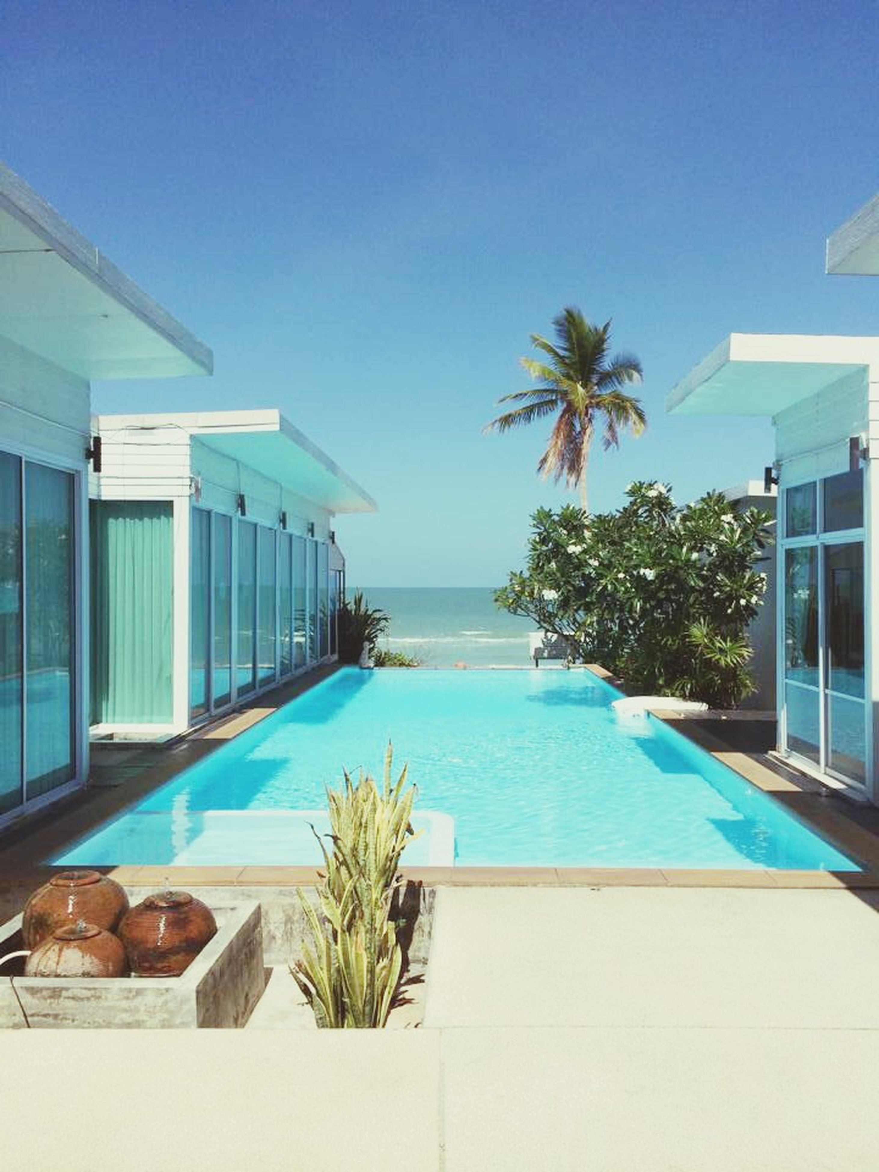 palm tree, blue, swimming pool, water, architecture, built structure, sea, building exterior, tree, clear sky, horizon over water, tourist resort, house, plant, sunlight, beach, window, sky, growth, day