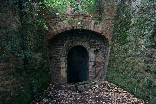 Abandoned Eerie Entrance Horror Moss Scary Tunnel Underground Passage