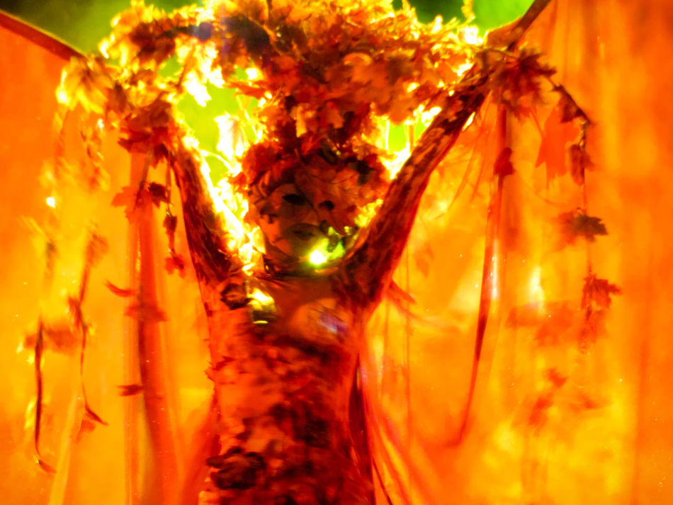 Color Palette Costume Masked People, Masked Masked Performer Masked Woman Masked_people Mask Performing Performer  Orange Color Stage Photography Wings Spread Color Palette By MOO Colour Of Life, Musical Theater  Theatre Stage Costume Stage Stagephotography