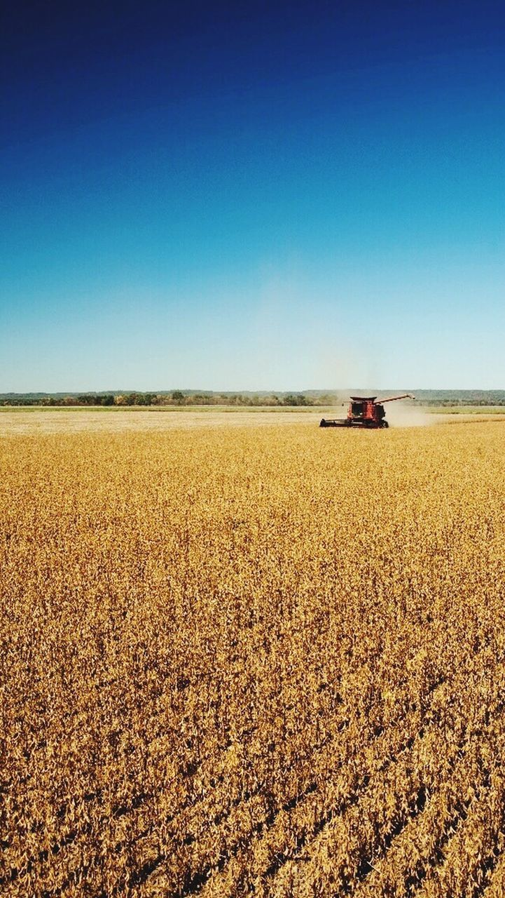 agriculture, field, clear sky, day, transportation, tractor, copy space, rural scene, outdoors, nature, blue, crop, agricultural machinery, no people, sky, combine harvester, scenics, landscape, growth, beauty in nature