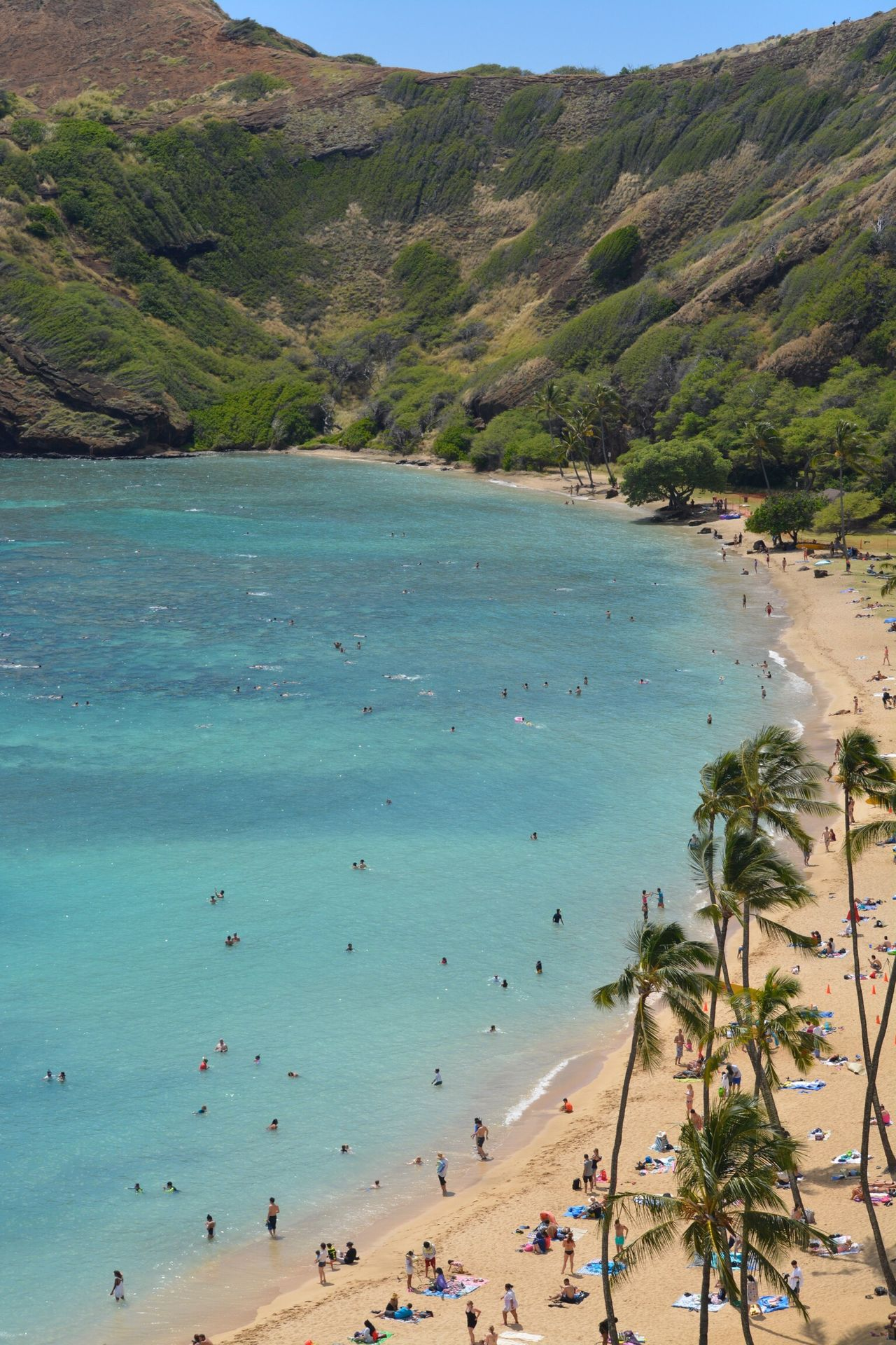 Beach Sea Sand Water Scenics Coastline Travel Destinations Tourism Outdoors Vacations Horizon Over Water Large Group Of People Coastal Feature Beauty In Nature Sky Nature Tranquil Scene Tree Day People Oahu, Hawaii Beachphotography Landscape