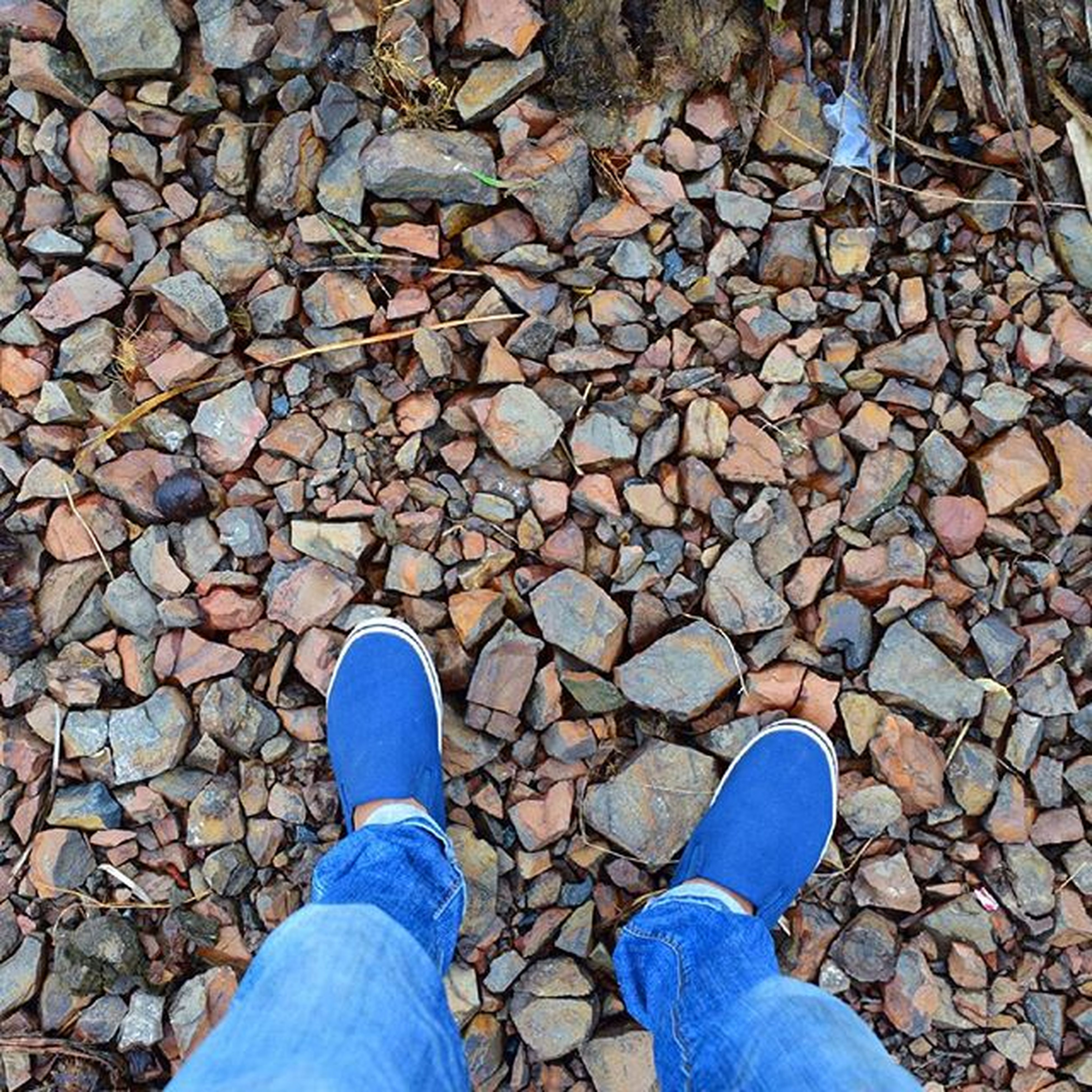 low section, person, shoe, personal perspective, standing, high angle view, jeans, human foot, lifestyles, footwear, men, directly above, cobblestone, unrecognizable person, leisure activity, leaf, street