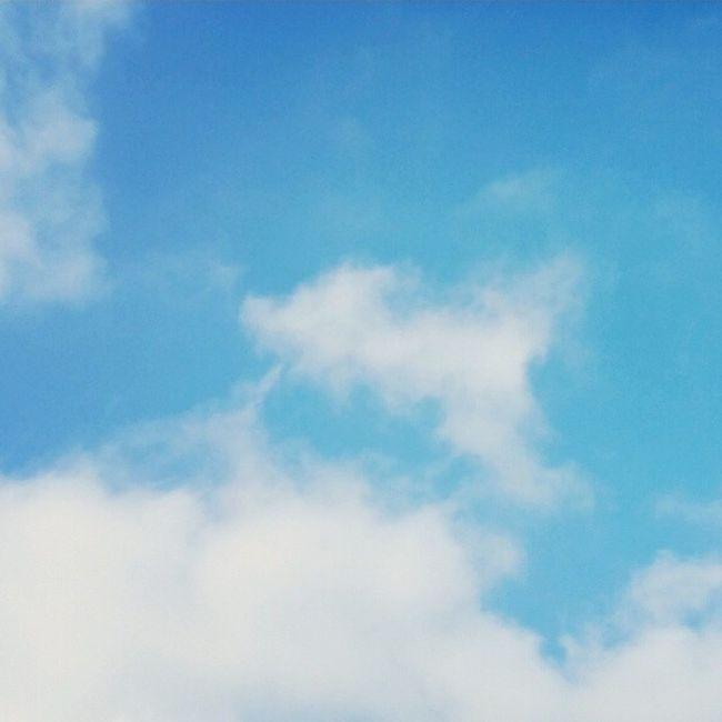 Tag 1 der Junijubelei mit dem Thema Oben und unserem Wunderschönen Himmel über potsdam