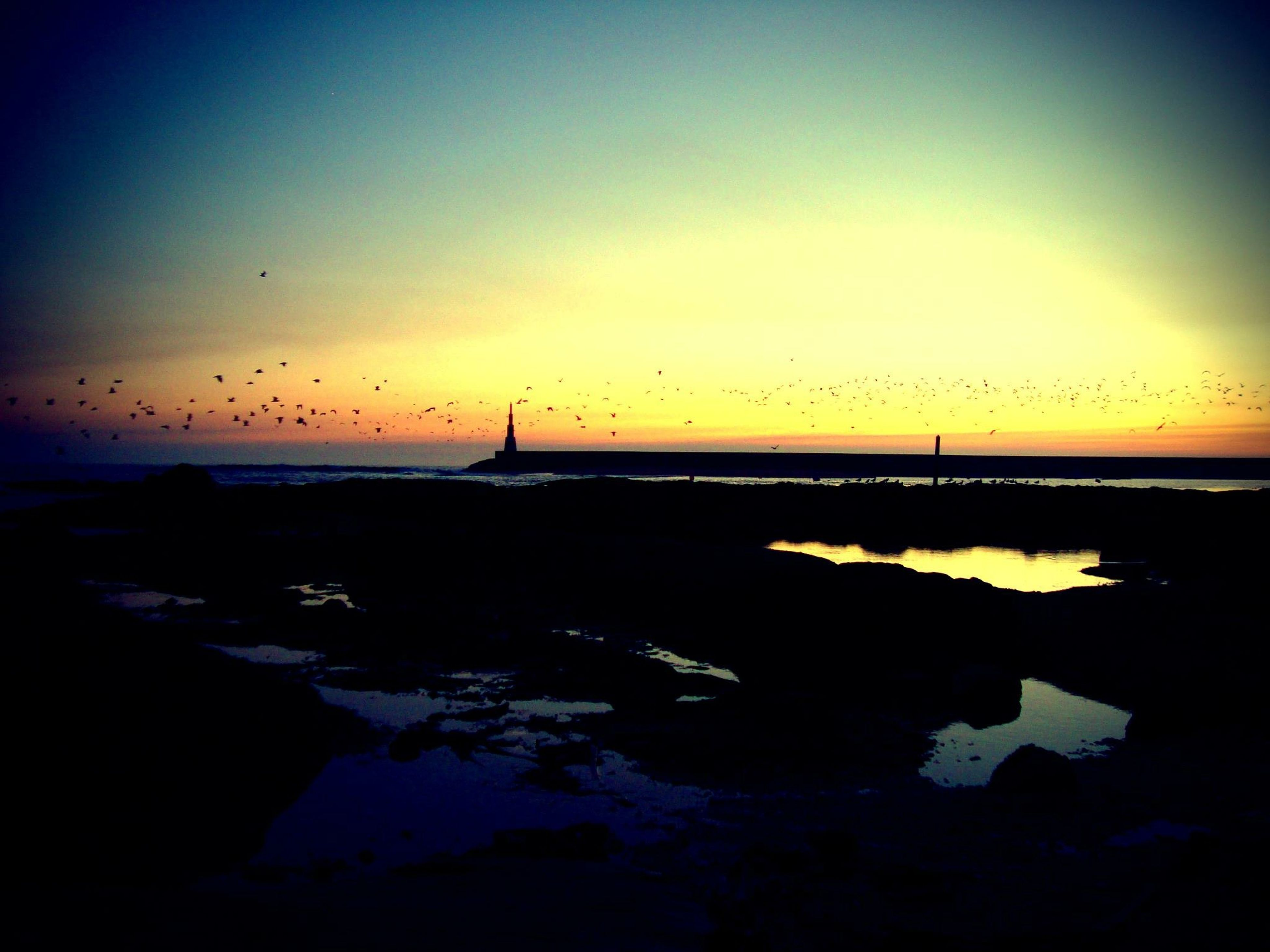 sunset, water, sea, silhouette, sky, scenics, tranquil scene, beauty in nature, tranquility, horizon over water, nature, bird, beach, dusk, idyllic, orange color, shore, reflection, rock - object, outdoors
