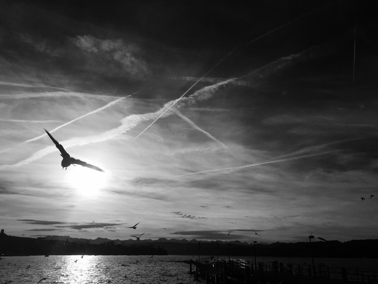 silhouette, sky, water, nature, flying, sunset, sea, beauty in nature, tranquil scene, scenics, outdoors, tranquility, mid-air, cloud - sky, no people, horizon over water, day, spread wings, vapor trail