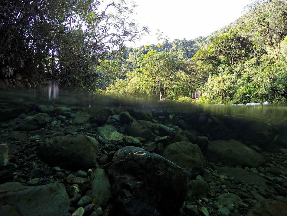 Tranquil Scene Tranquility Nature Water Non-urban Scene Beauty In Nature Flowing Water Riverscape River Underwater Colombia Gopro Goprohero4 Gopro Shots Goprophotography GoPrography Goprouniverse