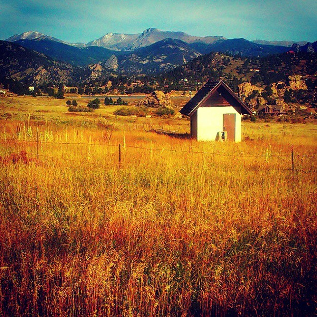 What a gorgeous Colorado Fall day in Estes Park! Autumn Cowx htc droidography