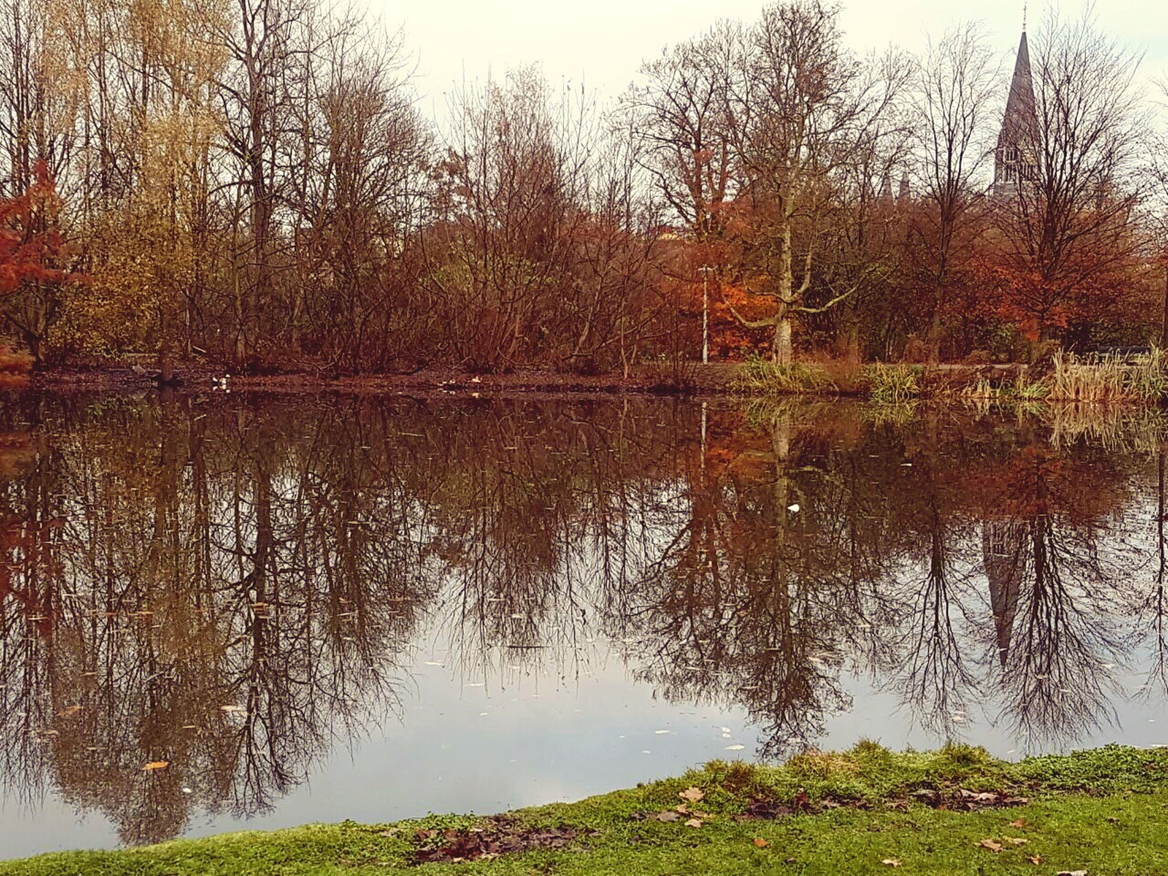tree, reflection, nature, water, lake, no people, day, outdoors, scenics, beauty in nature, sky