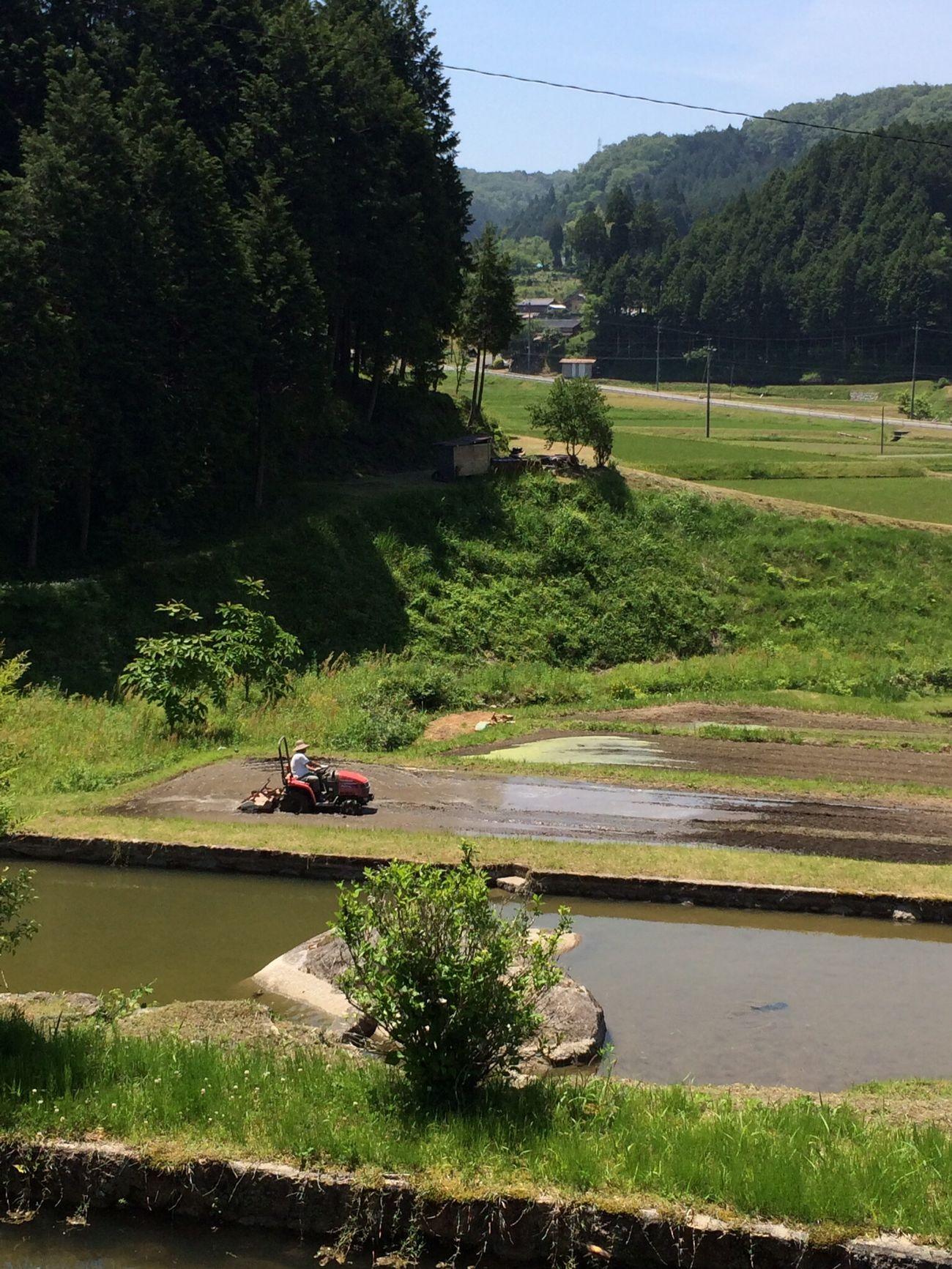 ウィークエンド百姓学校 田んぼ代掻き風景 Farmer Japan Landscape_Collection Rice Field