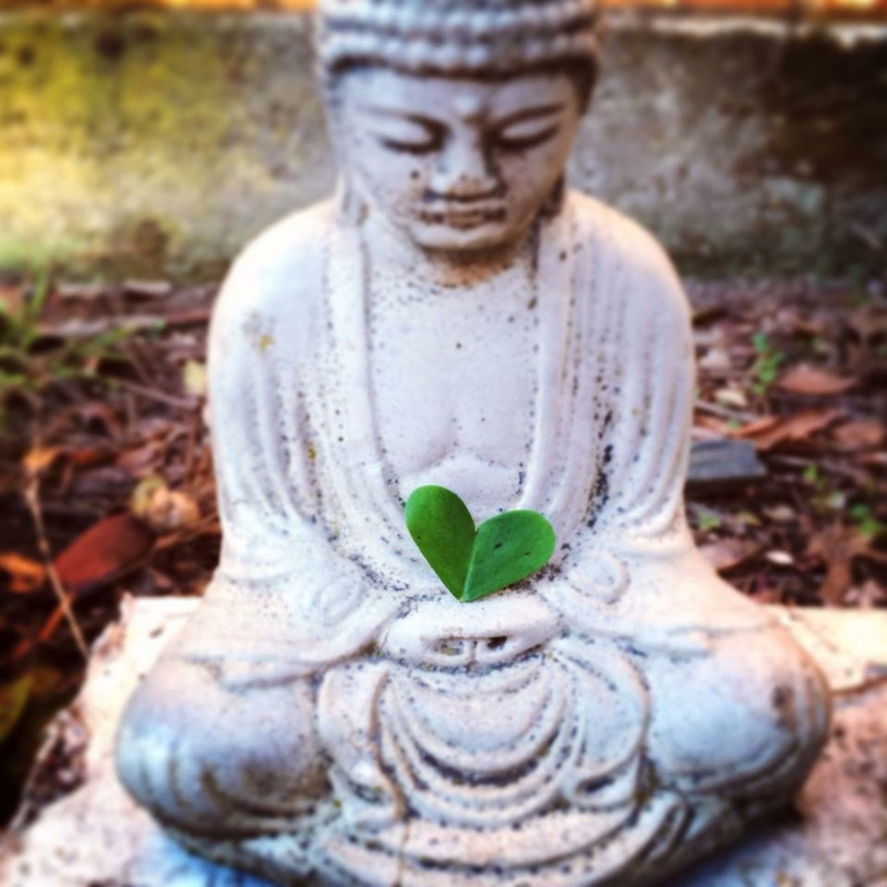 Buddha Zen Love Heart HeARTsy Hearts♡hearts Hearts HeartsINature Hearts In Nature Finding Love Find It In Everything Love Is All Around The Daily Heart