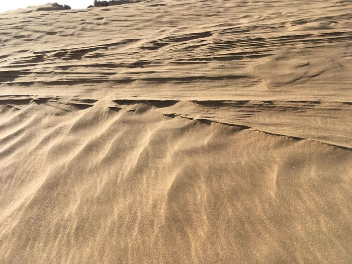 Sand Dune Desert Beauty China Beauty In Nature The Weekend Is Finally Here💞 Sand Nature Beach Outdoors Day Scenic Drive In ELP Alone Time Wind