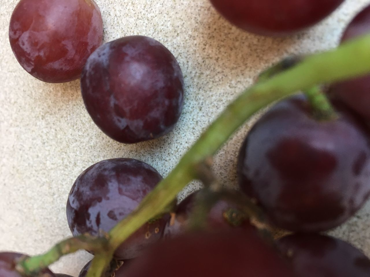 Grapes Food And Drink Close-up Fruit Indoors  Freshness Healthy Eating