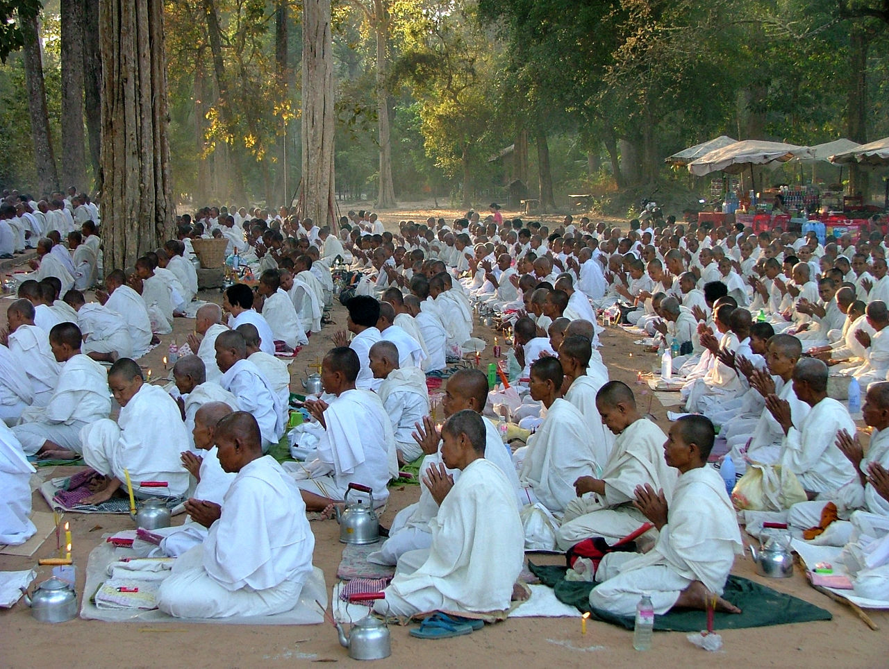 Abundance Budda Buddist Buddist Monks. Day In A Row Many Mixed Age Range Monksa Outdoors Outdoors Photograpghy  Park Relaxation Religion.  Sitting Sunshine Tree White Robes White.