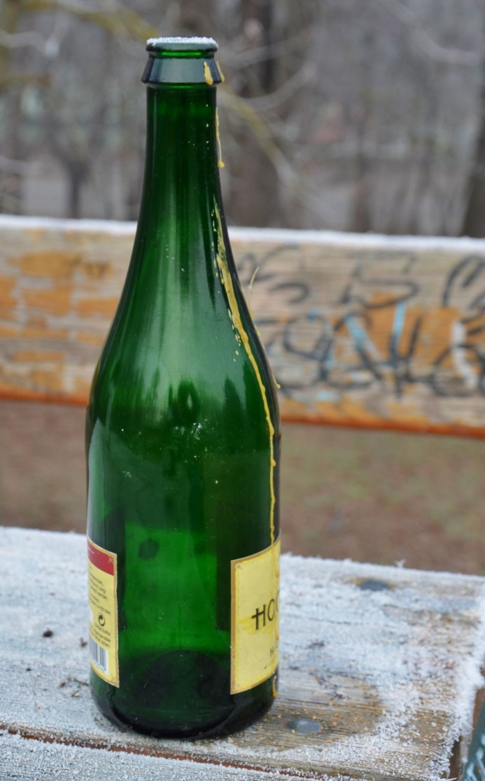 Bottle Close-up Cold Temperature Day Drink Focus On Foreground Food And Drink Green Color No People Outdoors Table The Day After Winter