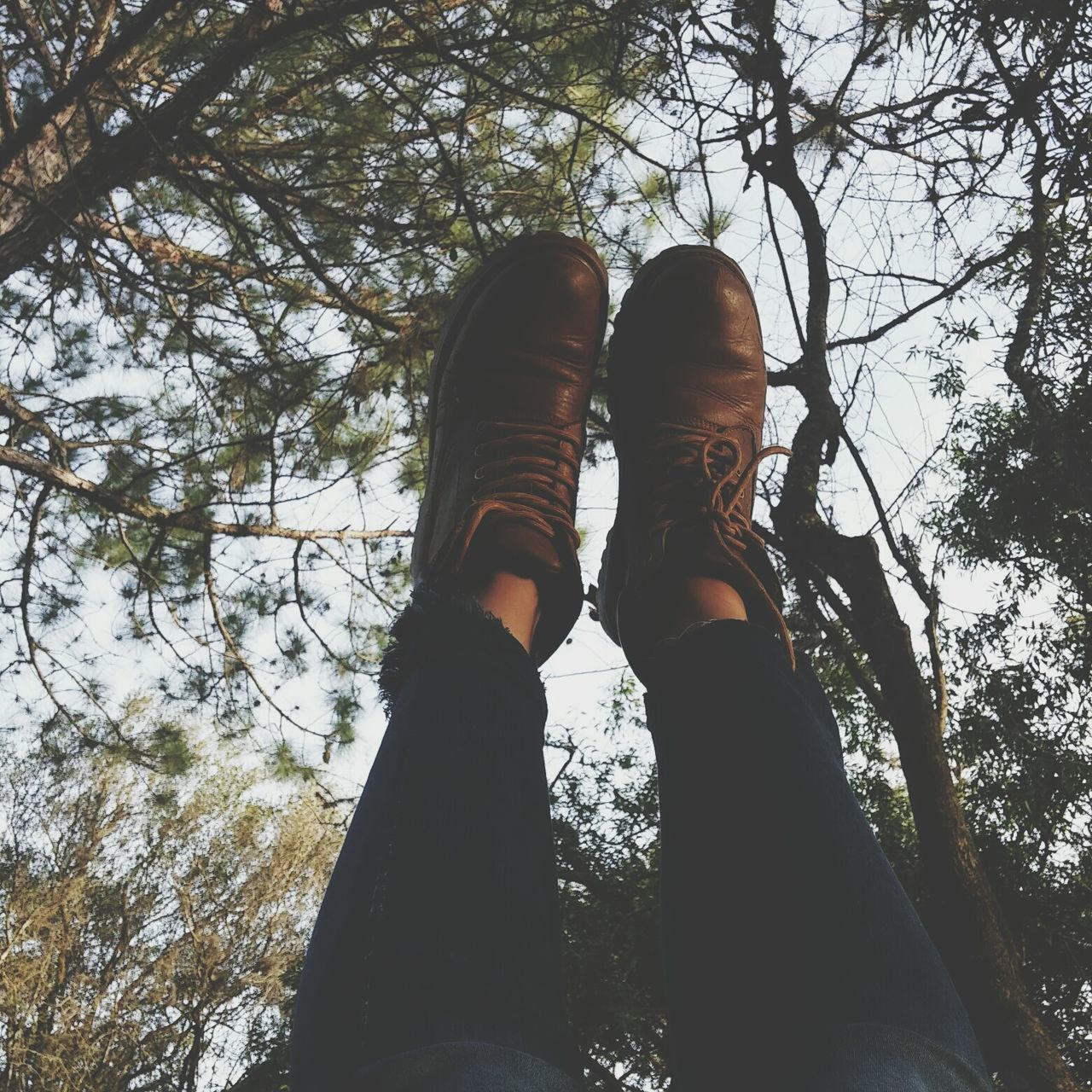low section, human leg, real people, tree, personal perspective, one person, shoe, day, forest, low angle view, outdoors, lifestyles, leisure activity, nature, standing, branch, women, human body part, beauty in nature, sky, people