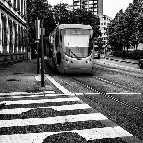 Streetphotography Streetphoto_bw Photoderue Noiretblanc Villedemulhouse City Mulhouse Alsace Igersbnw Igeralsace Streetlife Streetart Bnw_life Bnw Tramway Instaphoto Instaphotography Photooftheday Composition 500px Welovealsace Webstagram Instamulhouse Bnw_diamond @bnw_life Bnw_planet bw_photooftheday