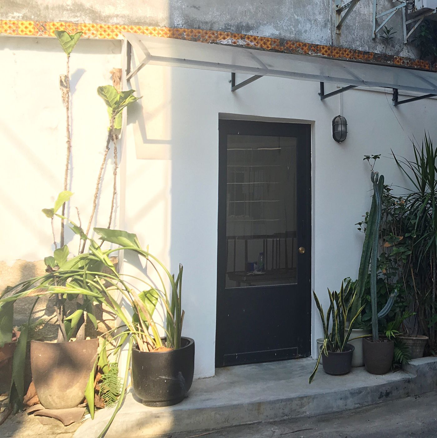 🎐 Wall - Building Feature Fine Art Photography Scenery Shop Plants Hanging Out Enjoying Life Easy Life Afternoon Sun Shadow Wall