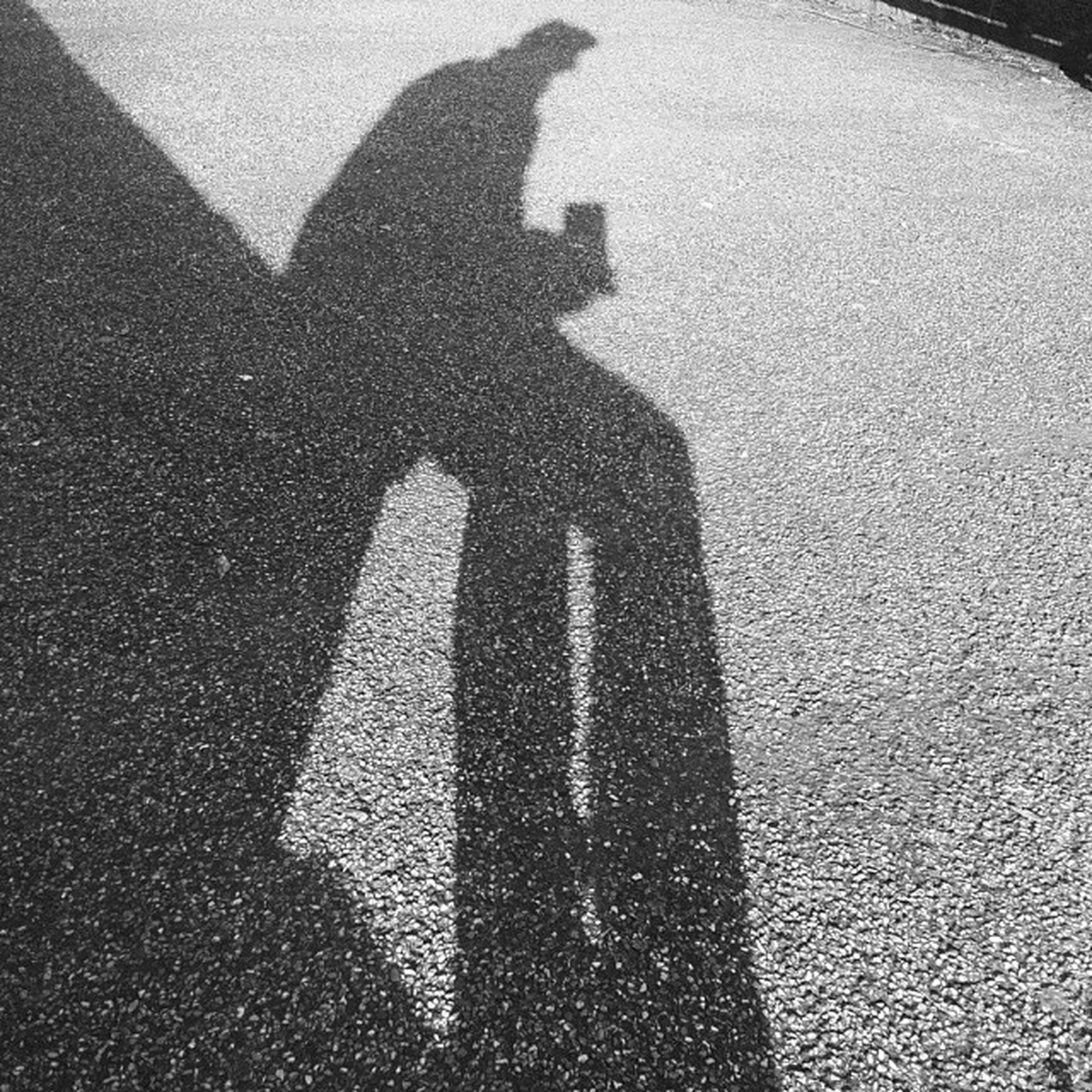 shadow, high angle view, focus on shadow, street, unrecognizable person, sunlight, human representation, communication, lifestyles, road, day, asphalt, leisure activity, outdoors, men, road marking, textured, standing