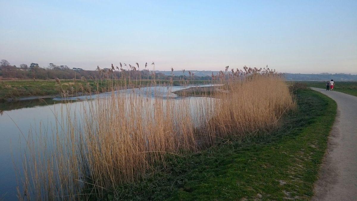 Wales Mytown Taking Photos Riverside River Landscape Walking Around Outdoors