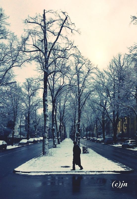snow avenue. by jn_