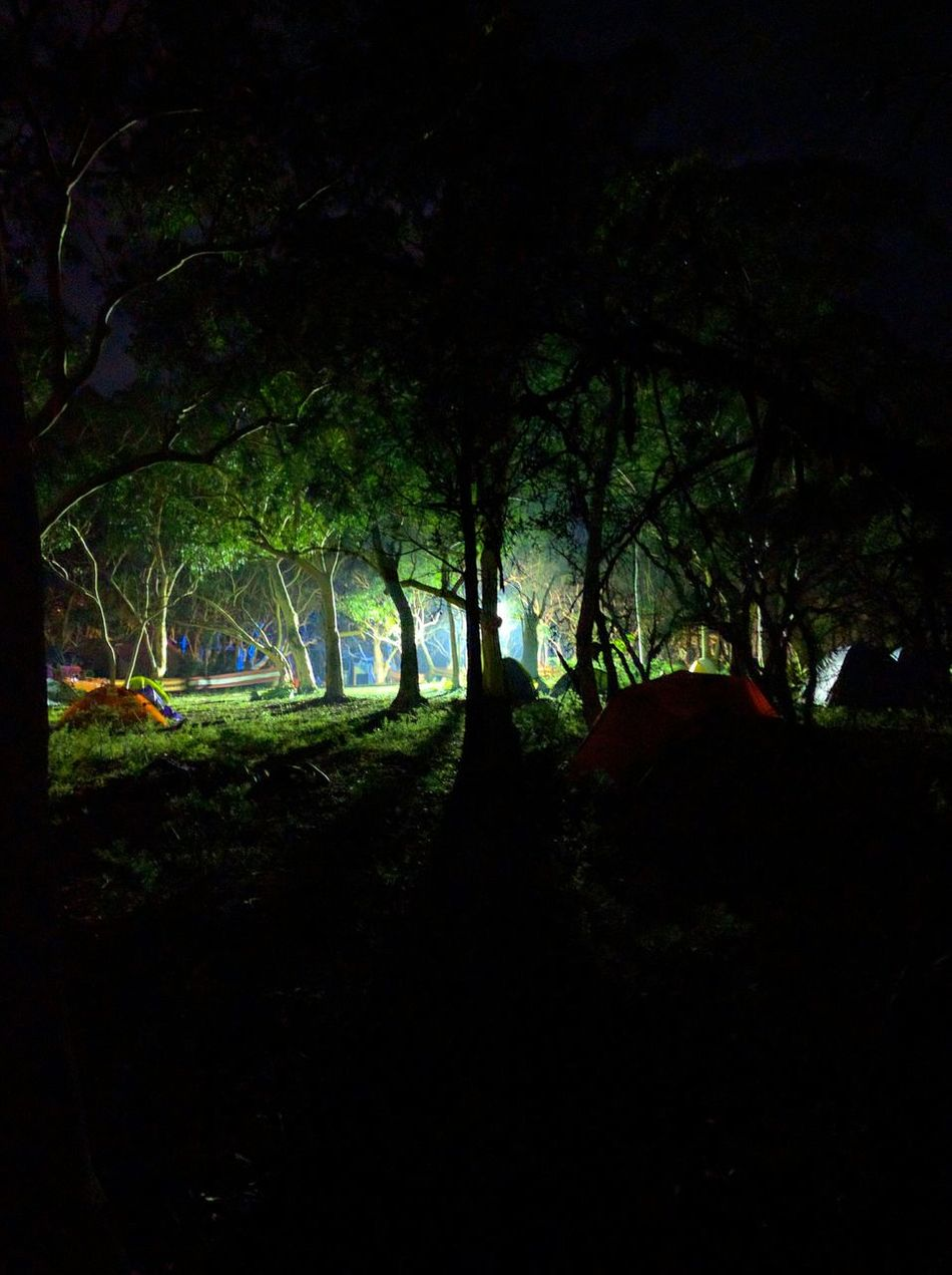 A floodlight upon a group of sleeping campers. Godrays Camping First Eyeem Photo