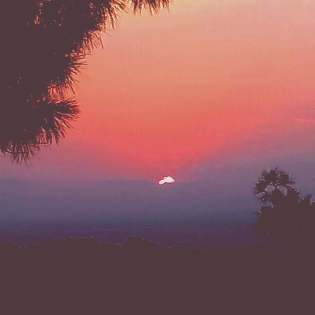 Tramonto Specialshoot Elsol Sunsetsilhouettes