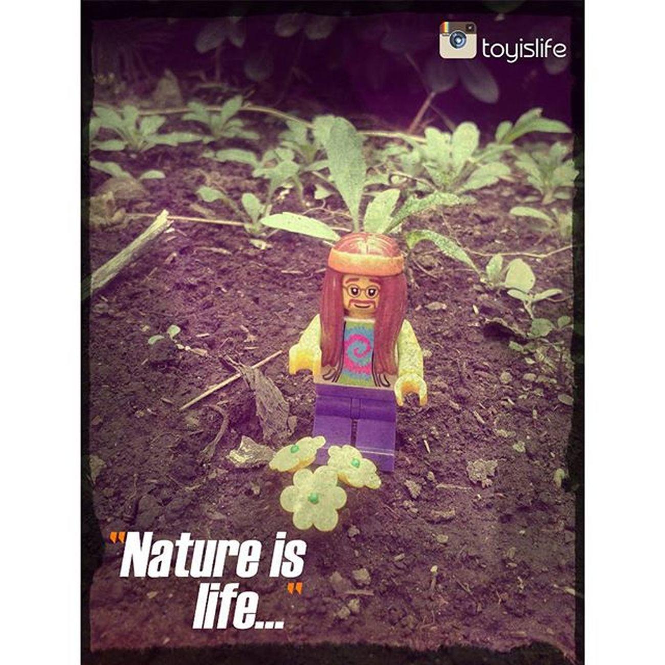 So peaceful... (re-release) LEGO Legophotography Toyography Toyfun Mondayfunday Groovy Peaceful Peace Peaceandlove Minifigaddiction Legoaddict Legominifigures Legominifigs Afol Vitruvianbrix Brickvision