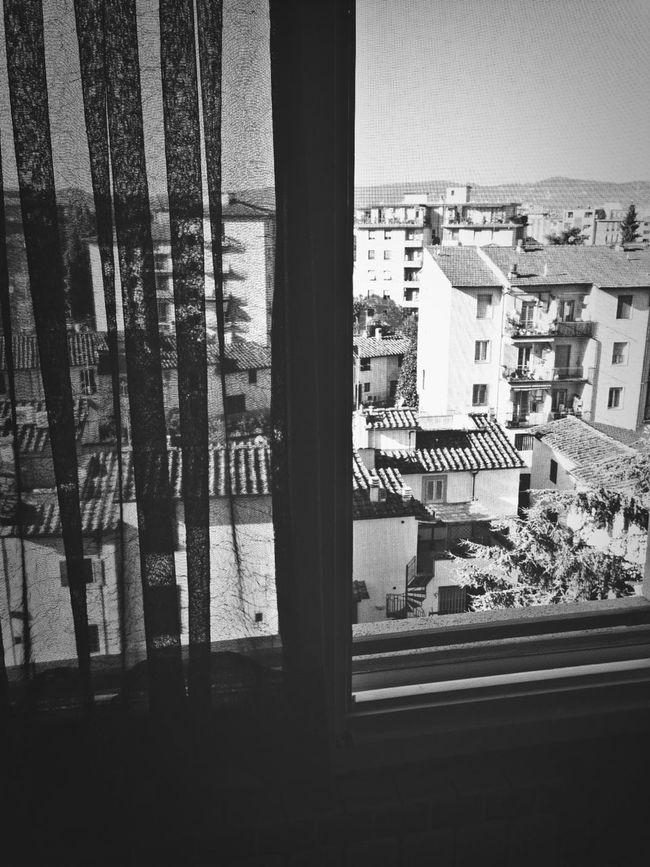 View Window Neighborhood Wake Up.