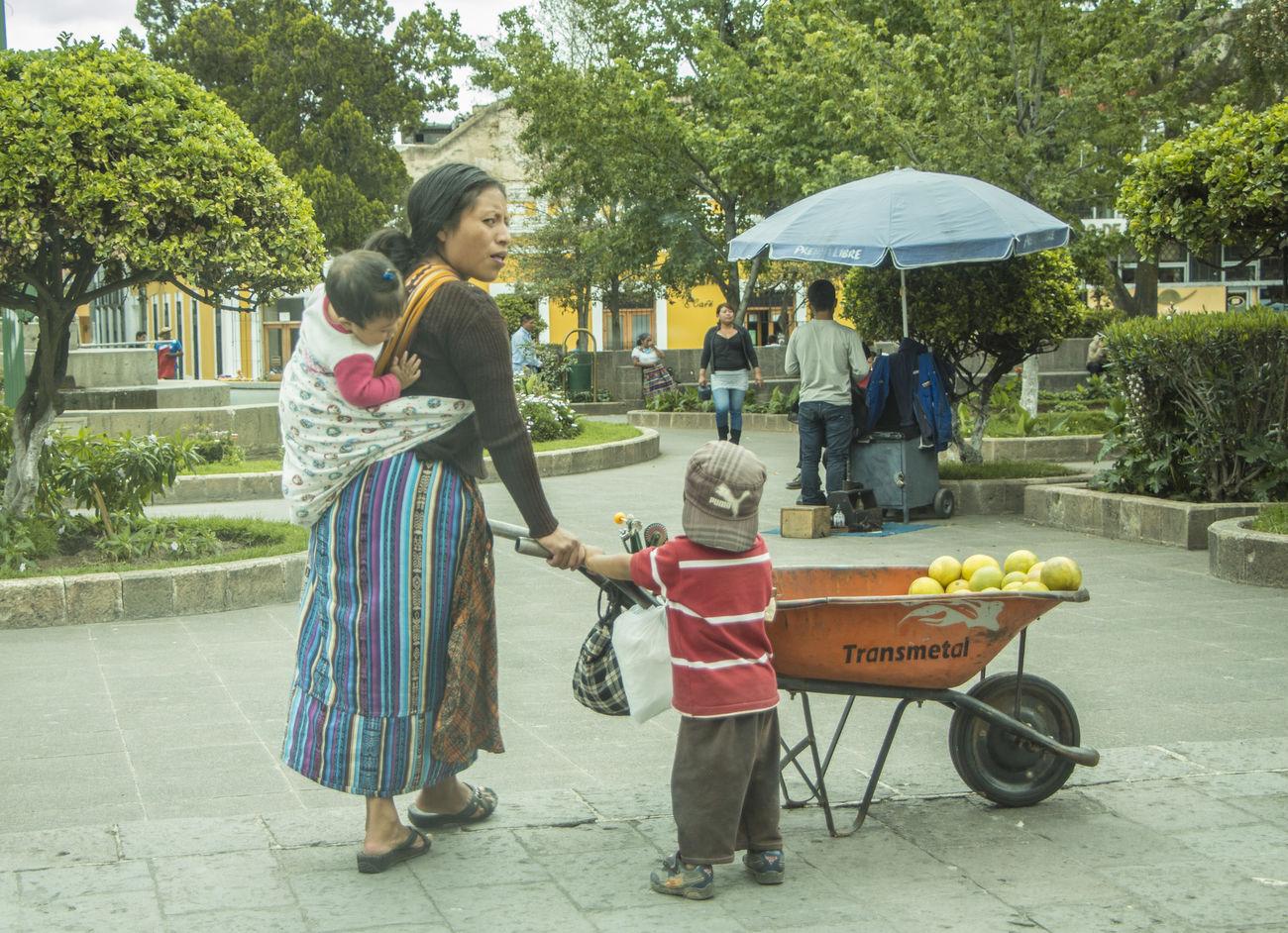 Casual Clothing City City Life Day Frutas Fun Lifestyles Mama Mamãe Niños Trabajando Trabajar Tree Venta Xela , Quetzaltenango