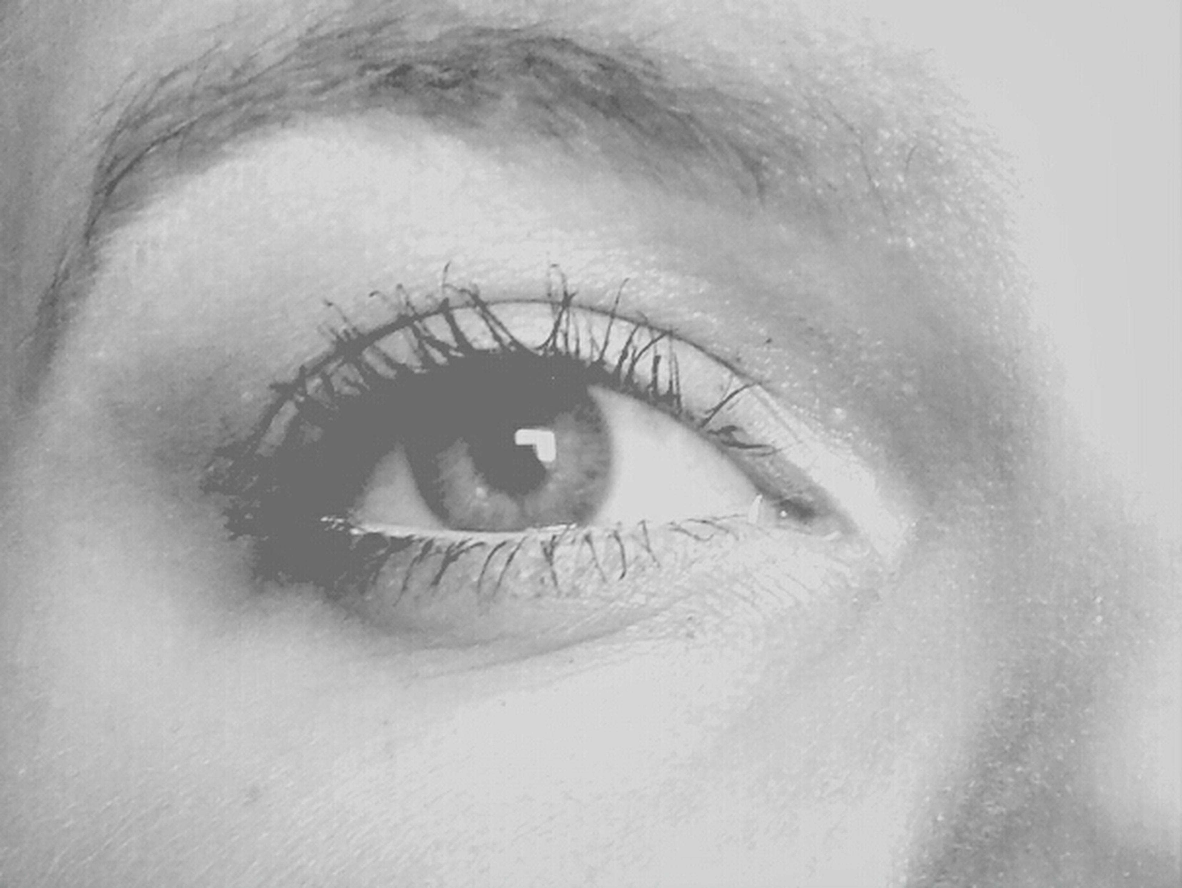 close-up, human eye, eyelash, indoors, human face, eyesight, part of, human skin, lifestyles, sensory perception, studio shot, headshot, person, looking at camera, extreme close-up, unrecognizable person, portrait