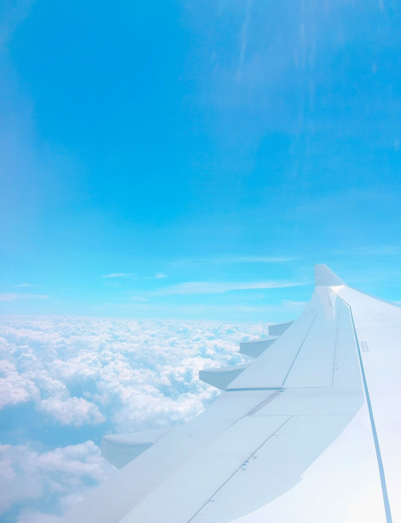 Sky Sky And Clouds Airplane Cloud Y00NJI