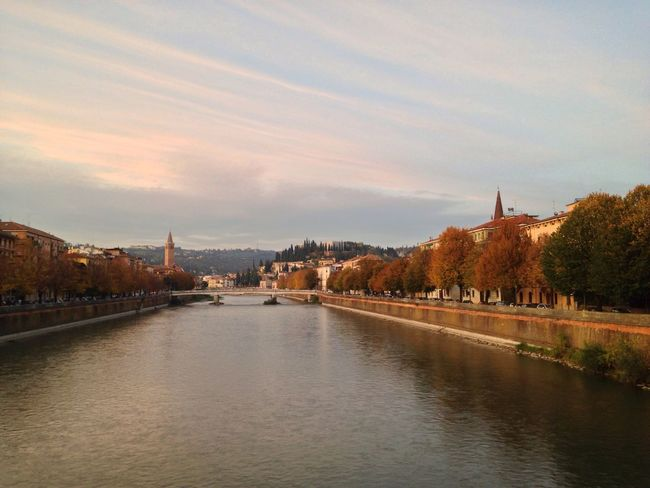 Verona Verona Italy Veneto Adige River Adige Architecture Built Structure Building Exterior River Water Sky Bridge - Man Made Structure Connection City No People Waterfront Outdoors Nature Tree Chain Bridge Day Autumn