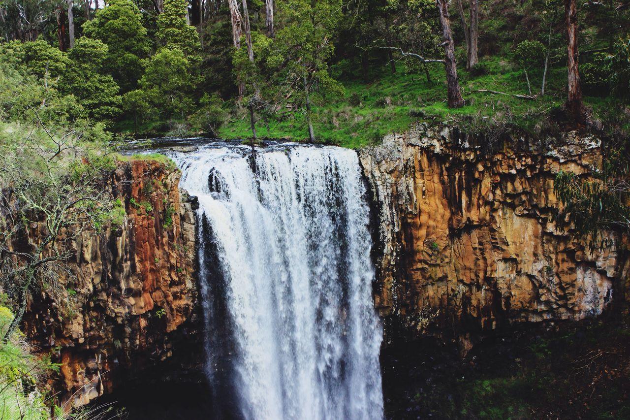 Trentham Falls ☀️