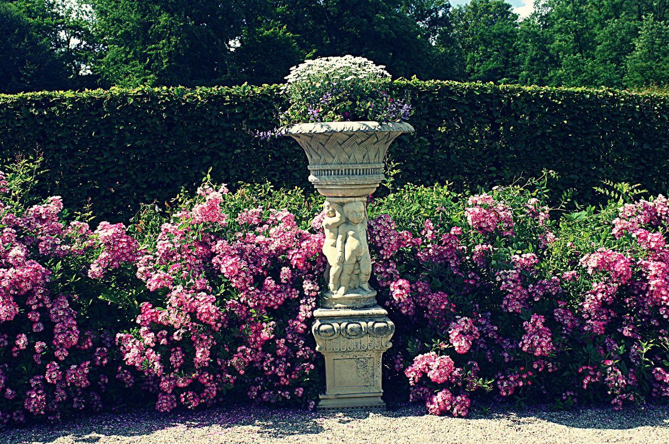 Flowerforfriends♡♥ Eyeemflowerlover Art In The Garden Art