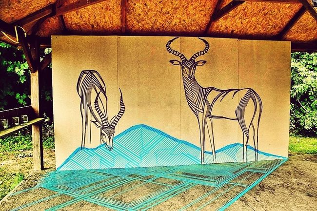 Impala antelopes created with tape. Tape Art Streetart Streetphotography Visual Statements