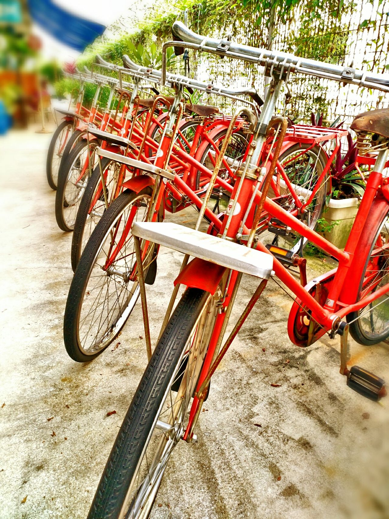 Outdoors Day Red No People Close-up Land Vehicle Art Is Everywhere EyeEmNewHere Singapore Tire Wheels Transportation Vehicle Bicycle Bicycle Wheel Bike Singapore Break The Mold The Great Outdoors - 2017 EyeEm Awards The Street Photographer - 2017 EyeEm Awards Neighborhood Map BYOPaper!