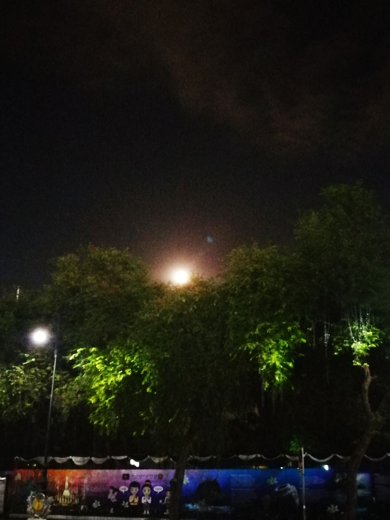 Super Moon Moon Shots Moon_collection Tree Landscape Shot_4_spot_originals Angle And Perspective Beautifully Organized Nightshot Outdoors